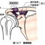 肩こり 肩鎖関節亜脱臼の整体