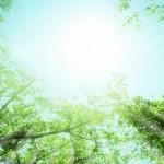 自律神経失調症改善への希望への道