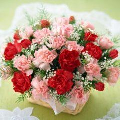 カウンセリングの花